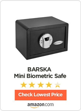10 biometric gun safes for handgun rifle read this before buying. Black Bedroom Furniture Sets. Home Design Ideas