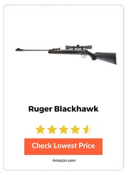 Rugger Blackhawk Rifle