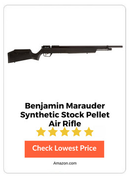 Air Rifle Benjamin