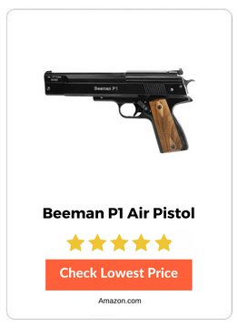 12 Best Pellet Pistols Available - Detailed Buyers Guide