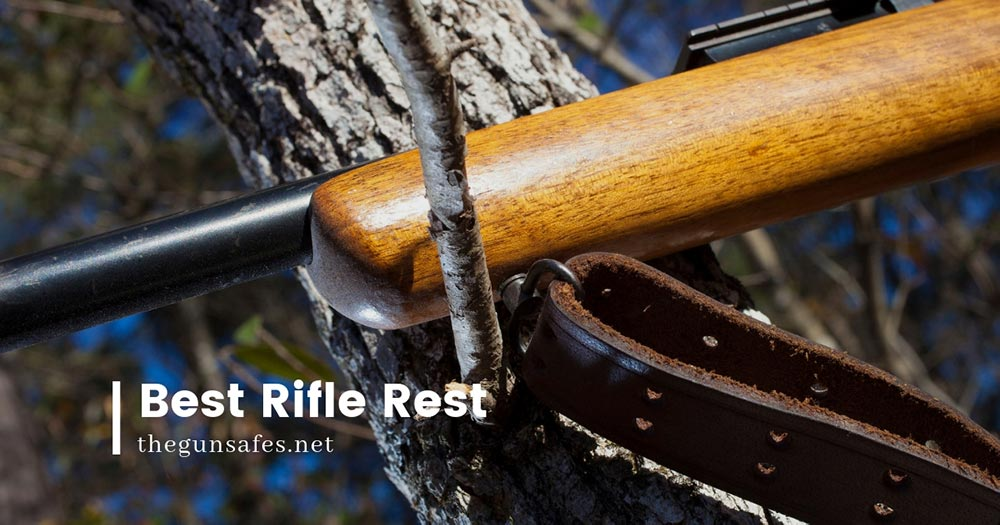 rifle rest on a tree branch