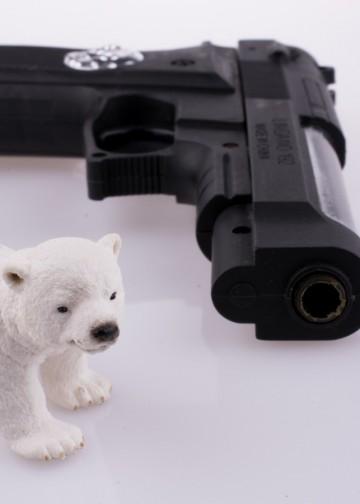 Polar bear toy near a pistol